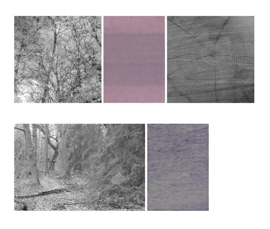 skogarna